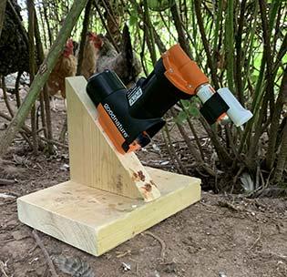 Goodnature rat trap