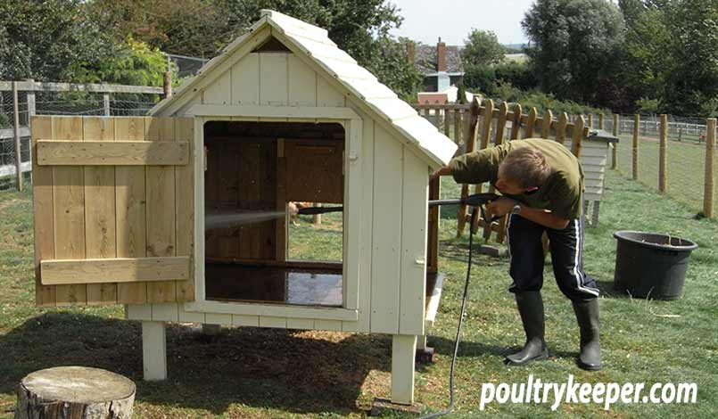 Cleaning Chicken House Red Mite Treatment