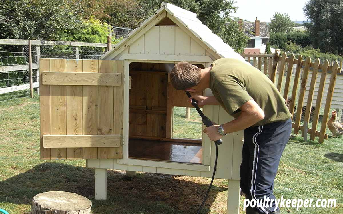 Washing a Chicken House to Get Rid of Red Mites