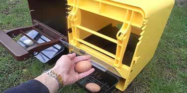 ChickBox Plastic Nesting Boxes
