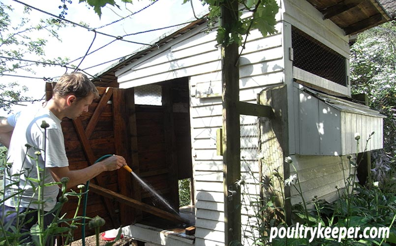 Cleaning Chicken House Red Mite