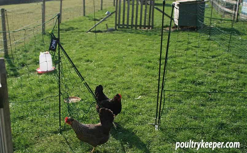 Omlet Chicken Netting Gate