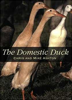 The Domestic Duck Book