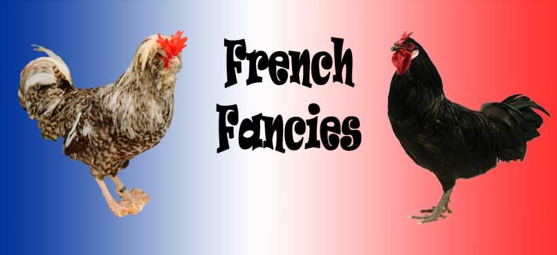French Fancy Chicken Breeds