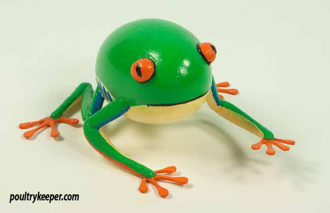 Frog Decorated Egg
