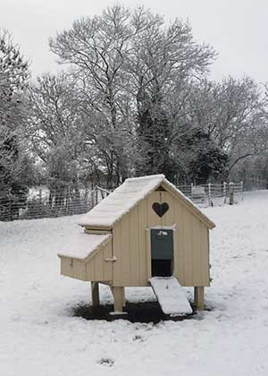 Chicken House in the Snow
