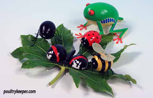 Insects Decorated Eggs