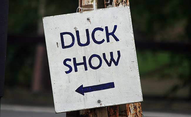 Duck Show Sign