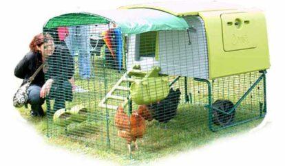 Omlet Chicken House