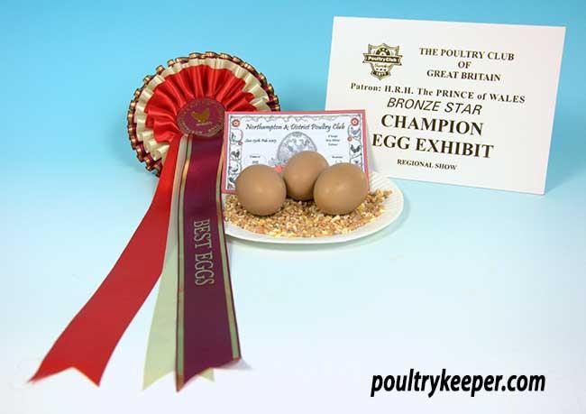 Champion Eggs