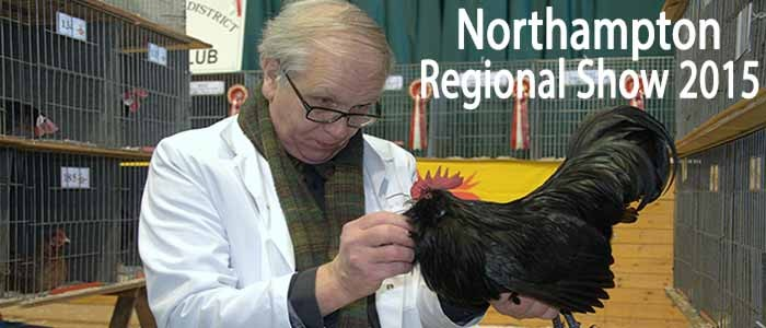 Northampton Regional Show 2015