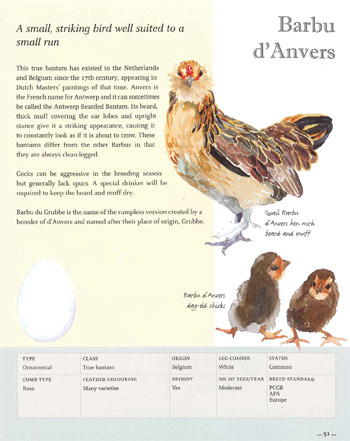 Illustrated Guide to Chickens Book Page
