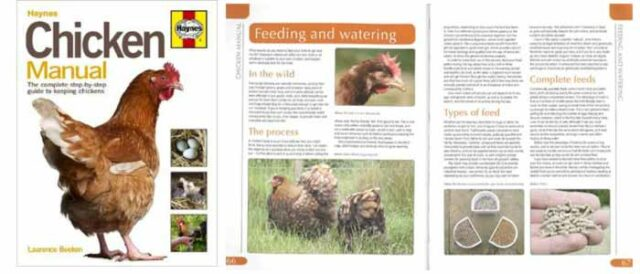 Chicken Manual Book Review