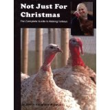Not Just For Christmas Book
