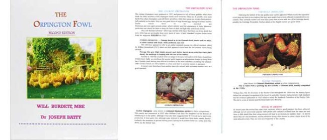 The Orpington Fowl Book Review