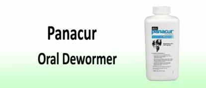 Panacur Wormer