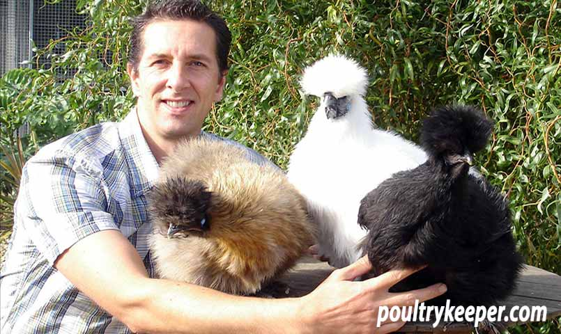 Laurence with his Silkies