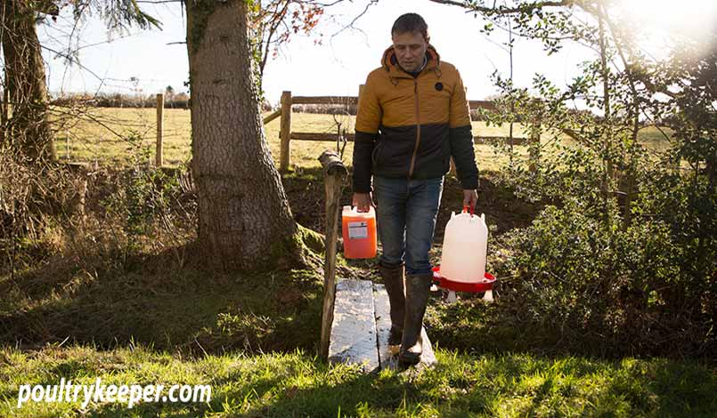Man Carrying Apple Cider Vinegar and Water to Chickens