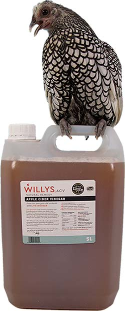 Willys Apple Cider Vinegar