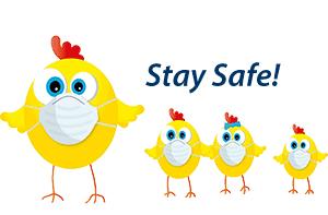 Stay Safe Chicks