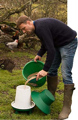 Filling up a poultry feeder