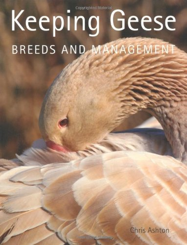 Keeping Geese Breeds and Management