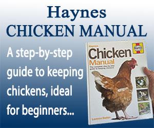Chicken Manual Banner