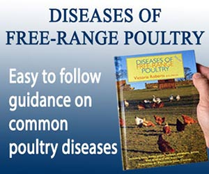 Diseases of Free Range Poultry Banner