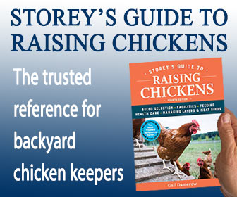 Storeys Guide to Raising Chickens Banner